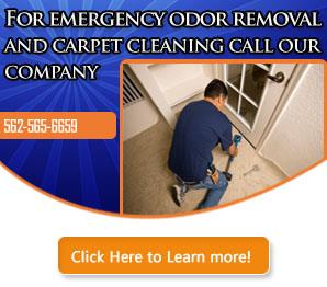 Blog | Carpet Cleaning Long Beach, CA